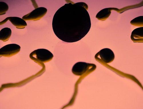 Fertilità maschile a picco, colpa di inquinamento e stili di vita