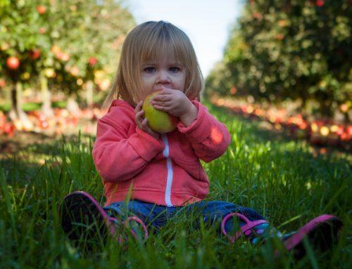 Alimentazione, le buone abitudini cominciano da piccoli