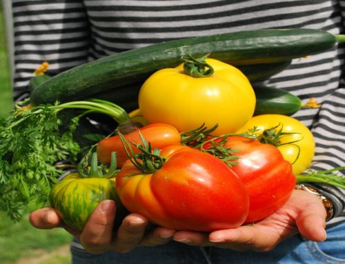 Alimentazione, tutti i colori della salute